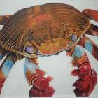 Krabby by Keiji