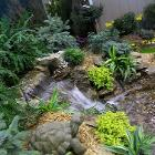Pond and Waterfall by wabash