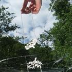 Hanging Hand 1 by Kellybug