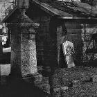 An Unforgotten Presence by Nate Ross