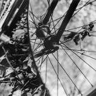 Hidden Portals: Bike by mollieb