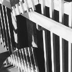 Hidden Portals: Fence by mollieb
