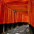 Kyoto Torii by Eric Dover